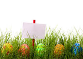 Easter advertisement — Stock Photo