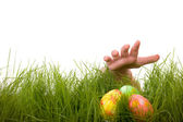 Easter egg hunt — Stock Photo