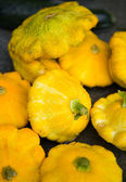 Yellow pattypan squash — Stock Photo