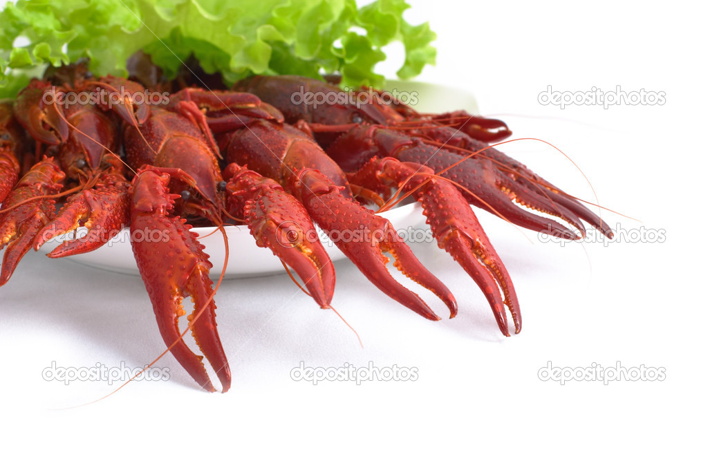 Delicious cooked crayfishes served with green salad leaves isolated on white background — Stock Photo #4685797