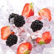 Ice Strawberries and Blackberries — Stock Photo #4695703
