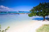 Norte da ilha maurícia — Foto Stock