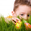 Stock Photo: Easter egg hunt