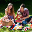 Family picnic - Stock Photo