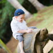 Riding Giant Turtle - Stock Photo