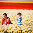In tulip field — Stock Photo