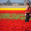 Mother and Baby in Tulip Field — Stock Photo