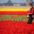 Mother and Baby in Tulip Field — Stock Photo #4730426