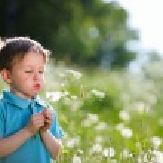 Boy with dandelion — Stock Photo