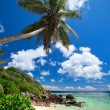 Stunning beach in Seychelles — Stock Photo