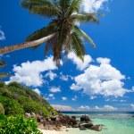 Stunning beach in Seychelles — Stock Photo #4731222