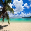 Stunning beach in Seychelles - Stock Photo