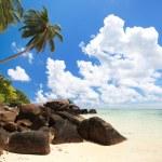 Stunning beach in Seychelles — Stock Photo #4731355