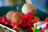 Kokosnüsse und hibiskusblüten — Stockfoto