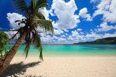 Stunning beach in Seychelles — Stock Photo