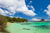 牧歌的な熱帯のビーチ — ストック写真