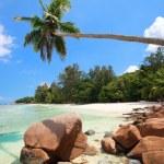 Perfect beach in Seychelles — Stock Photo