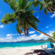 perfecte strand in Seychellen — Stockfoto