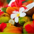 Coconuts, fruits and tropical flowers - Foto Stock