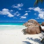 Idyllic beach in Seychelles — Stock Photo #4975768