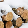 Stock Photo: Firewood under snow