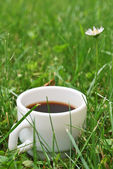 Coffee in the grass — Stock Photo