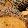 Chopped firewood — Stock Photo #5110220