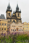 Church in Prague — Stock Photo