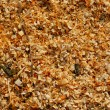 Sawdust — Stock Photo #5316823