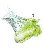 Beijing cabbage in water splash — Stock Photo