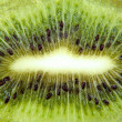 Macro background from green kiwi slice — Stock Photo
