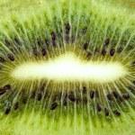 Macro background from green kiwi slice — Stock Photo