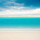 Tropical sandy island — Stock Photo