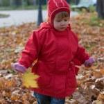 Golden autumn — Stock Photo #4096182