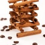 Cinnamon and coffee — Stock Photo