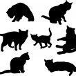 Set of cats silhouettes — Stock Vector