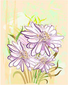 Grange floral background with herberas — Stock Vector