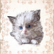 Royalty-Free Stock Vektorfiler: Vintage greeting card with  fluffy kitten