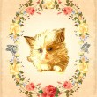 Stock Vector: Vintage greeting card with fluffy kitten