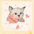 Valentines day greeting card with kitten and hearts — Stock Vector