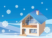 Three dimensions family house on the winter background — Stock Vector
