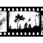 Camera film — Stock Vector #3939509