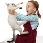 Beautiful little girl with a kitten. — Stock Photo