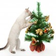 Kitten and artificial Christmas tree. — Stock Photo