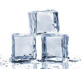 Trois cubes de glace — Photo