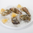 Oyster with lemon — Stock Photo