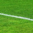 Royalty-Free Stock Photo: White line on a soccer field grass