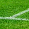 White line on a soccer field grass — Stock Photo