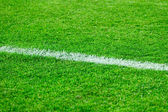 White line on a football field grass — Stock Photo