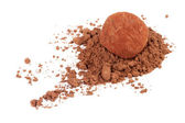 Chocolate truffle candy in cocoa powder isolated on white — Stok fotoğraf